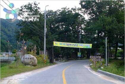 강릉 해살이마을 개두릅축제 2018