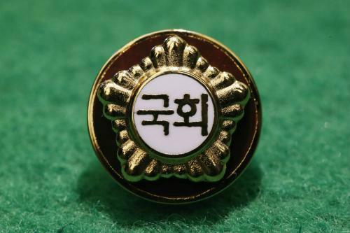 '불체포 특권' 못 놓은 국회…'절대 배지' 여전