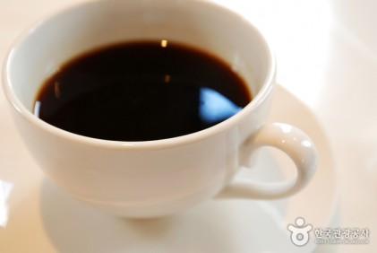 커피나무축제 2018