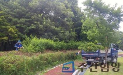 함양 상림공원 여름맞이 새단장 한창
