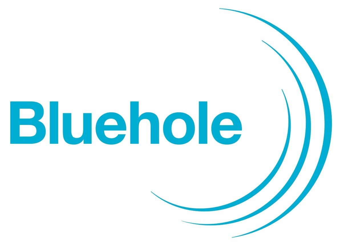 블루홀, 게임 개발사 '딜루젼스튜디오'인수