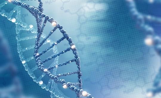 나이벡, 세계면역암학회서 항암 펩타이드 연구 발표