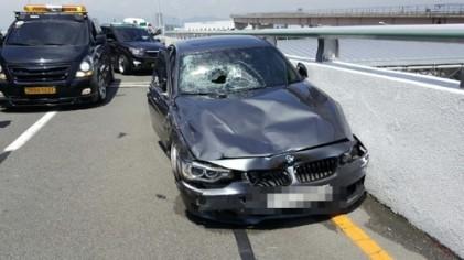 김해공항 BMW