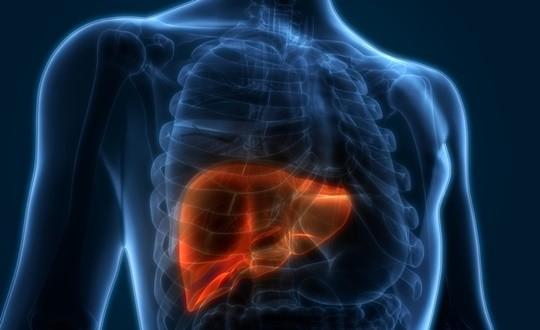 재발한 미세 간암, 고주파 열 치료술 성공 98.4%
