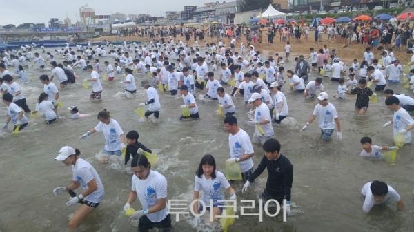 '장사항 오징어 맨손잡기 축제' 21일 팡파르~