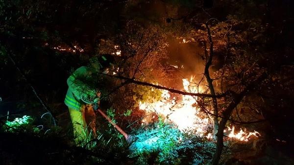 경기도 안양 삼성산 화재…산림 약 3천㎡ 불타