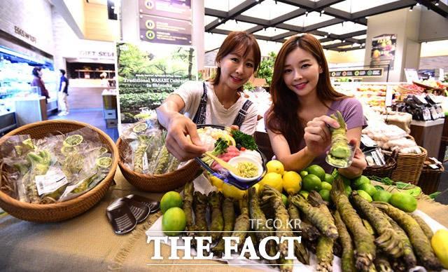 '직접 갈아 먹어요~'…신세계백화점, 시즈오카 와사비 출시