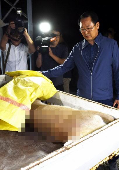 동물원 탈출한 퓨마 사살에 국민청원 게시판은 '부글부글'