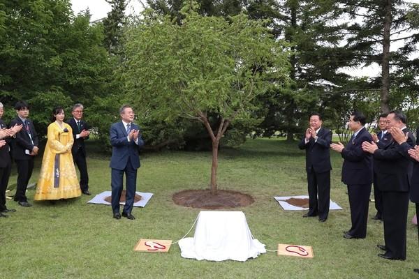 문재인 대통령, 백화원에 '번영' 상징하는 모감주나무 식수