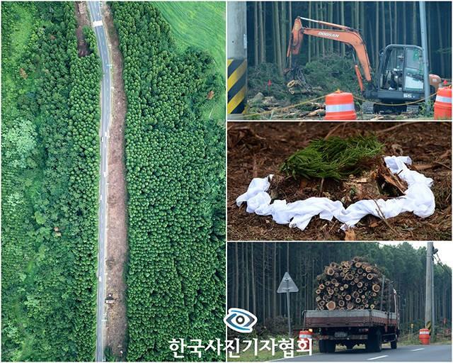 더팩트 이효균 기자, 사진기자협회 '이달의 보도사진상' 수상