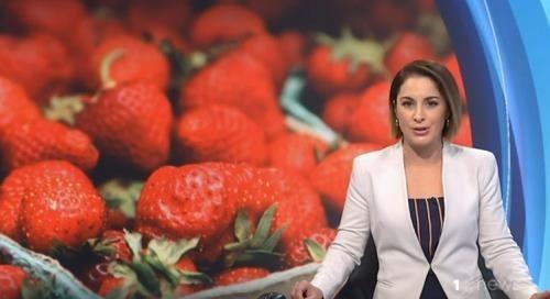 딸기 안에 바늘이?…호주·뉴질랜드 '바늘 딸기' 공포