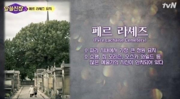 나영석 예능 '알쓸신잡3', 사진 무단도용 논란에 VOD서비스 중단