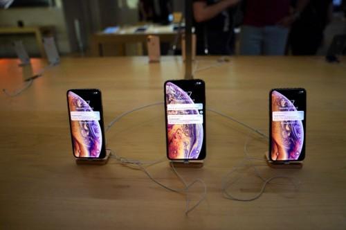 애플 '프라이버시 포털' 론칭…구글·페이스북과 차별화 시도