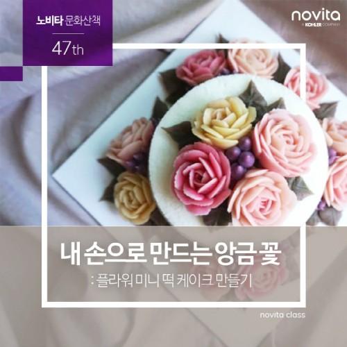 콜러노비타, 11월 문화산책 '플라워 미니 떡 케이크 만들기' 참가자 모집