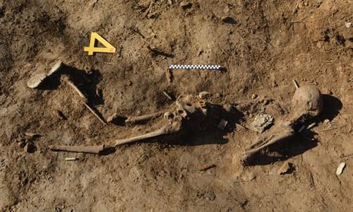 DMZ에서 유해 5구 추가 발견…'완전유해' 1구도 포함
