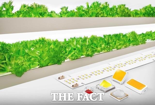 삼성전자, 식물 생장용 LED 패키지·모듈 신제품 출시