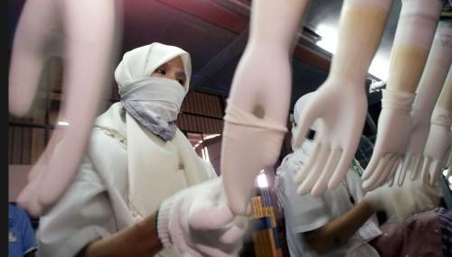 의료장갑 공장서 이민자들 노동 착취… 英 정부 조사 착수