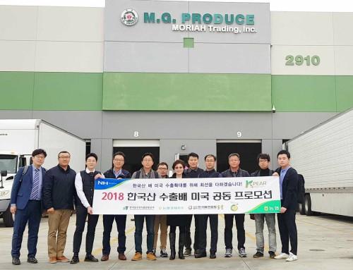 농협, 한국 배 對미국 수출확대를 위한 프로모션 추진