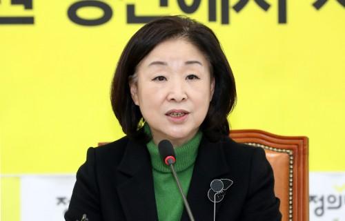 """심상정 """"12월 중 선거제 개혁안 마련"""""""