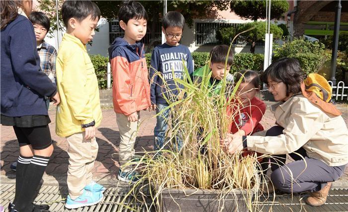 학교텃밭 체험프로그램, 농업가치 교육 '효과'