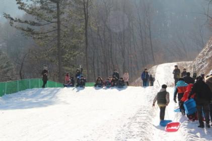 물맑은양평 빙어축제 2019