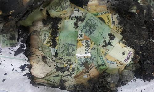 썩고 불에 타고 찢기고… 폐기한 돈 4조