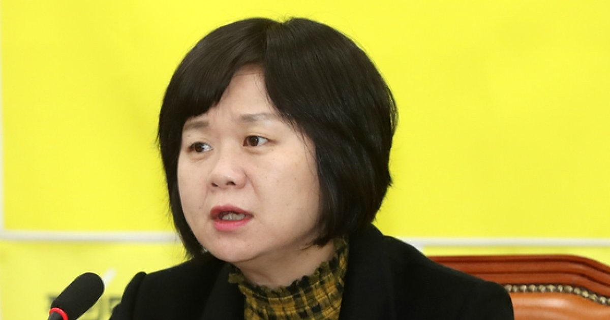 """이정미 """"정의당이 국회개혁 주도…'세비, 징계, 출장' 외부에 맡기자"""""""