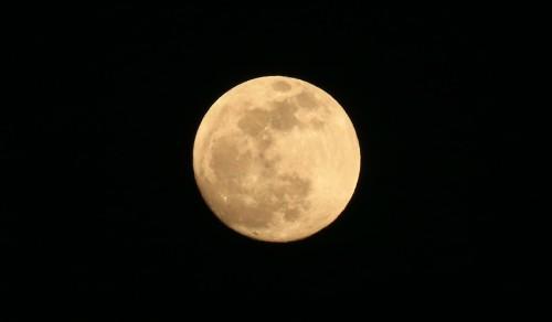 슈퍼문 떴다…오늘(20일) 보름달이 '슈퍼 블루 울프 문'이라 불리는 까닭은