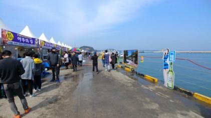 서천 동백꽃 주꾸미축제 2019
