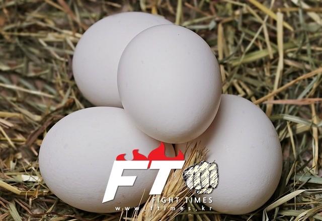 달걀 껍데기만 보고 산란일자 확인 가능해진다