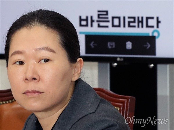 국회 사개특위 위원인 권은희 의원