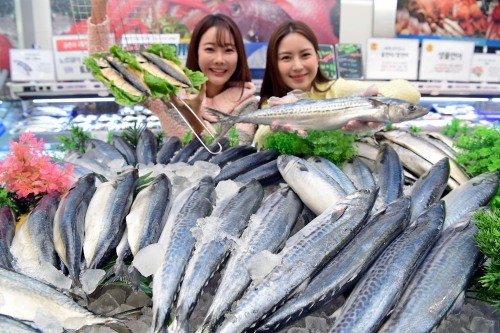 롯데마트 '등 푸른 생선 Festa'