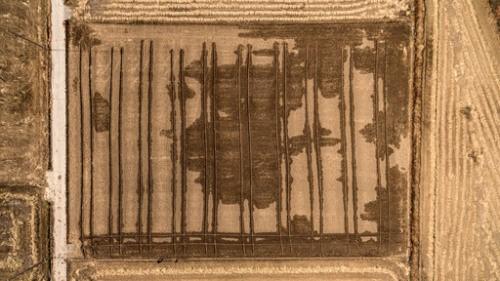 논바닥으로 솟구친 지하수… '액상화 현상' 첫 관측