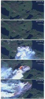 그린란드, 2주째 대형 들불 진행중