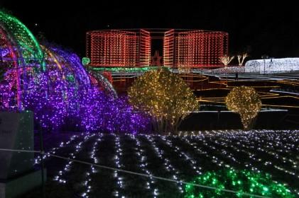 울산대공원 장미원 빛축제 2017