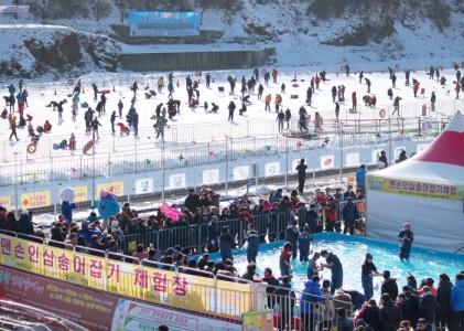 홍천강 인삼송어 축제 2018