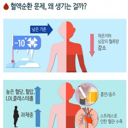 혈액순환 안 되는 이유? 혈액순환에 좋은 음식과 영양제