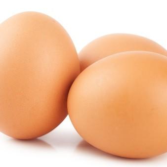 살충제 계란 성분 '피프로닐' 얼마나 위험할까?