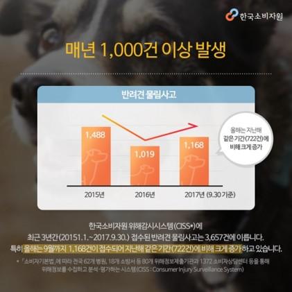 개 물림 사고 매년 증가, 개에게 물렸을 때 응급처치법