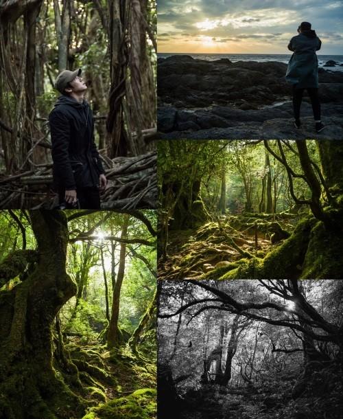 유연석의 선한 영향력… 사진전 수익금 전액 기부