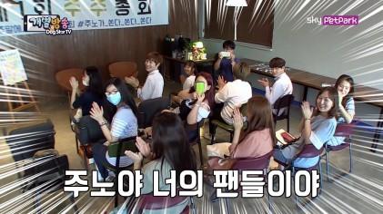주노를 찾아온 주주 대공개  9회