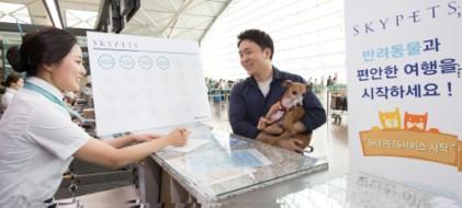 대한항공, 반려동물 운송 무료·할인 서비스