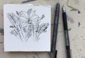 식물 펜 일러스트 그리기 Drawing _ botanical pen illustration