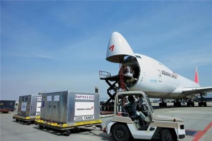 아시아나항공, 특수화물 통해 성장동력 강화
