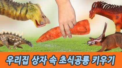 우리집 상자 속 초식공룡  키우기, 유아교육, 어린이 공룡 만화, 컬렉타피규어, 시즌5 55화ㅣ꼬꼬스토이