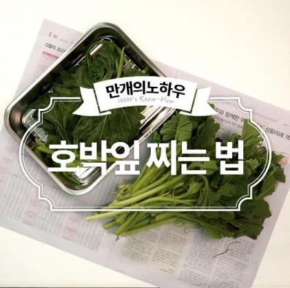 호박잎 야무지게 쪄볼까요? 호박잎찌는법