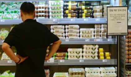이력제 없는 달걀… 유통경로 '오리무중'