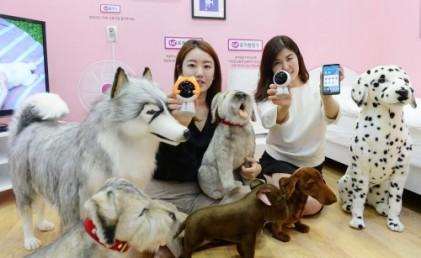 펫서울 2017, 반려동물을 위한 IoT 최첨단 스마트 홈서비스 인기