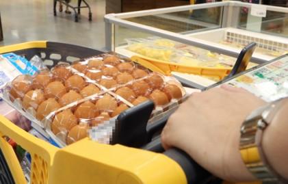 햄버거·소주·살충제 달걀… 소비자 먹거리 불신 확산