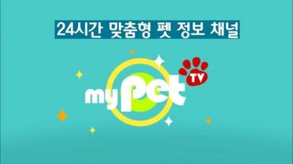 """★반려동물 """"대표""""채널 마이펫티비 제보영상 이벤트☆"""